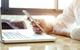 Nová doba digitálna. Budúcnosť platieb predstavujú CBDC