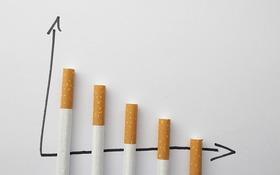 Anketa: Ako riešite vo firme fajčenie na pracoviskách?