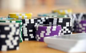 Práca v kamennom kasíne: len pre najodolnejších?