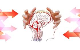 Prečo mnoho manažérov hazarduje so svojím mozgom?