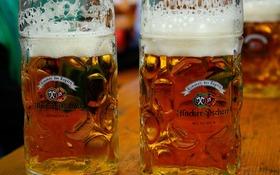 Všetko najlepšie, pivo! Oslávte jeho 500. výročie