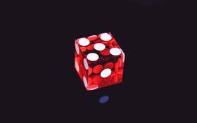 Aké je to sociálne kasíno?