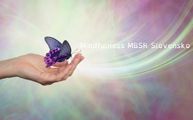 O strese sa dnes veľa hovorí. Čo znamená stres v ponímaní Mindfulness?